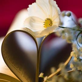 Jan Bickerton - Love is all Around