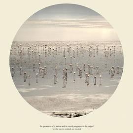 Guido Montanes Castillo - Love the wildlife