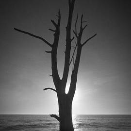 Bradley R Youngberg - Lovers Key Sunset Black And White Two