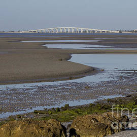 Low Tide At Bunche Beach by Meg Rousher