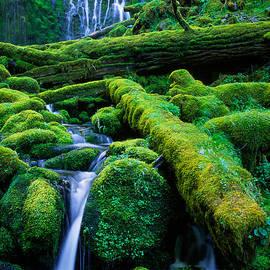 Inge Johnsson - Lower Proxy Falls
