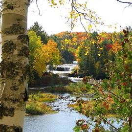 Lower Tahquamenon Falls in October No 1 by Keith Stokes