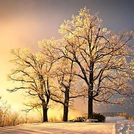 Dave Allen - Luminous - Blue Ridge Winter Sunset