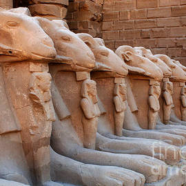 Luxor Temple 3 by Bob Christopher