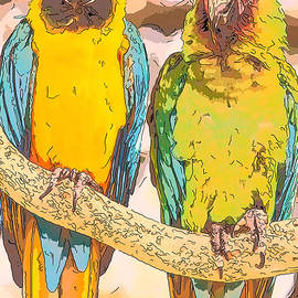 Macaws by Alice Gipson