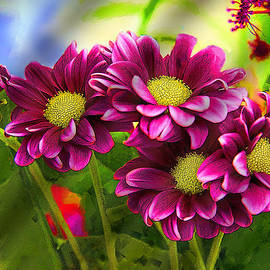 Magenta Flowers by Chuck Staley