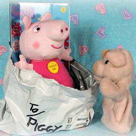 Mail Order Bride by Piggy