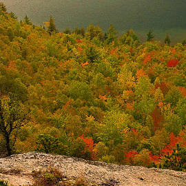 Stephen  Vecchiotti - Maine Fall Colors