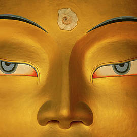 Maitreya Close Up Of Buddha by Colin Monteath