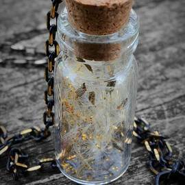 Make A Wish - Dandelion Seed In Glass Bottle With Gold Fairy Dust Necklace by Marianna Mills
