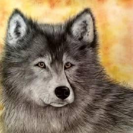 Annamarie Sidella-Felts - Mama Wolf