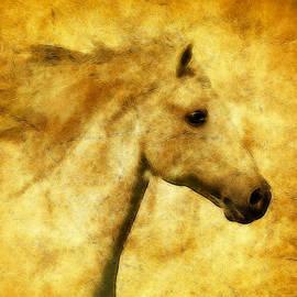 Athena Mckinzie - Marbled War Horse