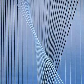 Steven Richman - Margaret Hunt Hill Bridge Cables