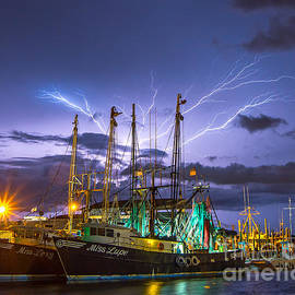 Masts Alive by Stephen Whalen