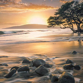 Hawaii  Fine Art Photography - Maui Free Flowing