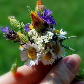 Marija Djedovic - Meadow bouquet