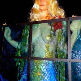 Ed Weidman - Mermaid Vision