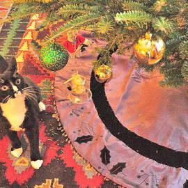 Merry Christmas Mitzen by Vanessa Williams