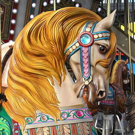 Merry Go Round Horse Close Up