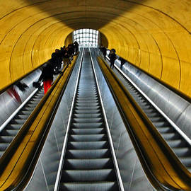 William Rockwell - Metro Surreal