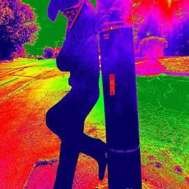 Midnight Cowboy by Ed Weidman