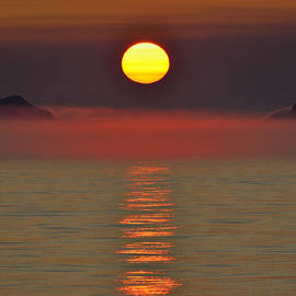 Midnight Sun by Tony Beck