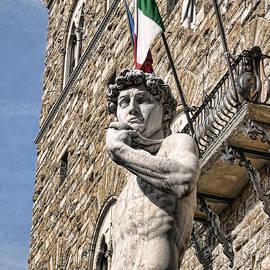 Mighty Michelangelo's David by Brenda Kean