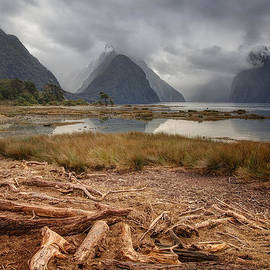 Milford Sound by Kim Andelkovic