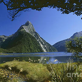 Milford Sound  New Zealand by Rudi Prott