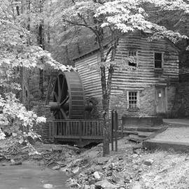 Mill in the woods by Dwight Cook