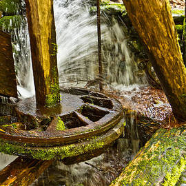 Mill Wheel by Terry Cotton