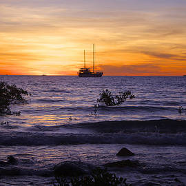 Venetia Featherstone-Witty - Mindil Beach Sunset