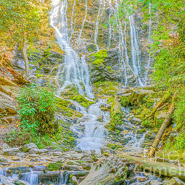 Mingus Falls by Elvis Vaughn