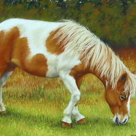 Margaret Stockdale - Mini Mare Pastel