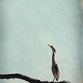 Brooke T Ryan - Minimalist Vintage Inspired Green Heron on Pale Blue Sky
