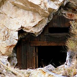 Minnie Lippiatt - Mining Backbone