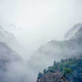Raimond Klavins - Mist in mountain mystery forest