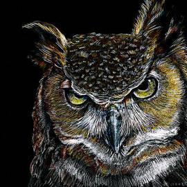 Mister Owl by William Underwood