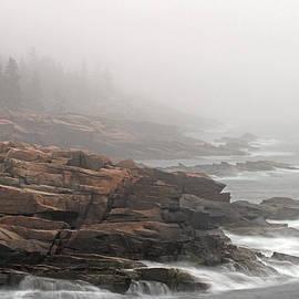 Juergen Roth - Misty Acadia National Park Seacoast