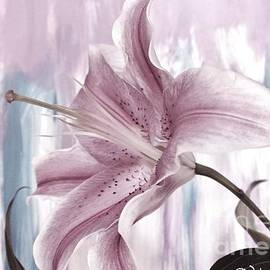Marsha Heiken - Modern Lily