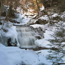 Gene Walls - Mohican Falls Surrounded By Winter White