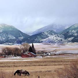 Kae Cheatham - Montana Ranch - 1