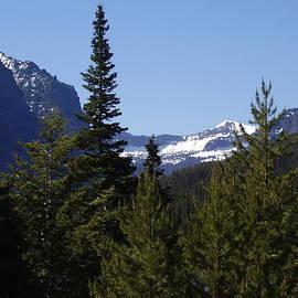 Yvette Pichette - Montana Rockies