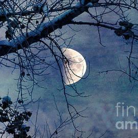 Janice Rae Pariza - Moon Above the Bough
