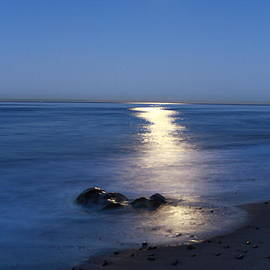 Moon on the Water by Richard Cheski