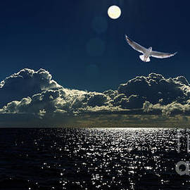 Moonlight Cloudscape by Geoff Childs