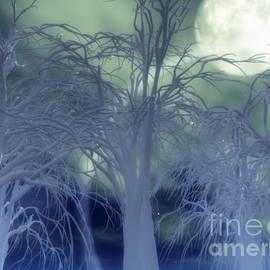 Eric Nagel - Moonlight Forest
