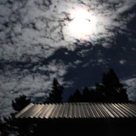 Ron McMath - Moonlit Roof