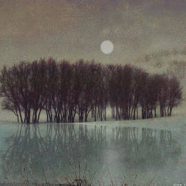 Moonrise At Icy Pond  by R christopher Vest