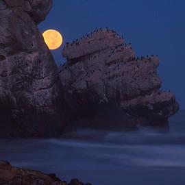 California Coastal Commission - Moonset at Morro Rock by Marlin Harms